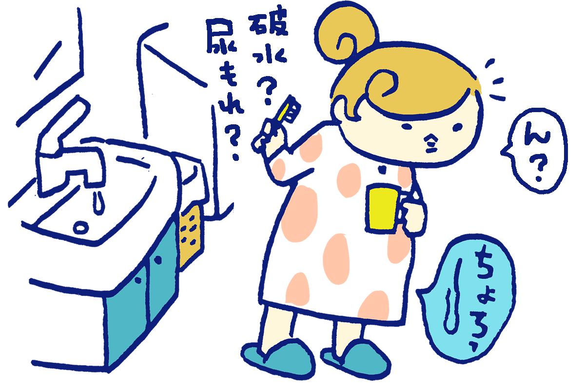 【医師監修】「破水」だと思ったらどうしたらいいの? 尿もれと区別はつくの?
